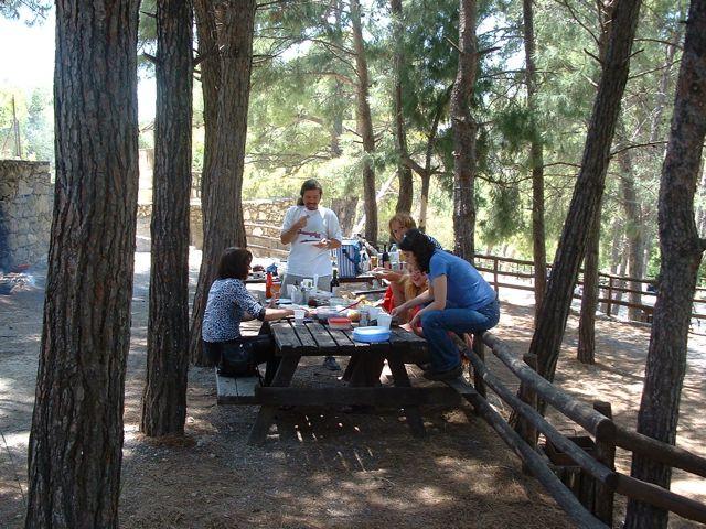 picknick-vladimir-01.jpg